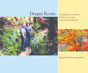 Deeper Roots: Strengthening Community Tenure Security and Community Livelihoods